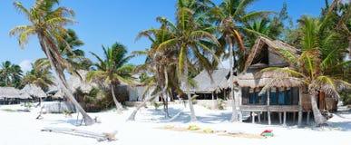 Panorama caraibico della spiaggia immagine stock libera da diritti