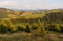 Panorama of the Carpathian Mountains in the evening Stock Photos