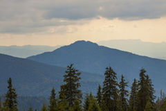 Panorama of Carpathian mountains in summer sunny day Stock Images