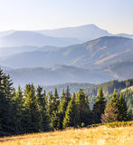 Panorama of Carpathian mountains in summer sunny day Royalty Free Stock Images