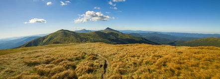 Panorama of Carpathian mountains in summer sunny day. Stock Image
