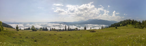 Panorama of Carpathian mountains in summer sunny day. Royalty Free Stock Images