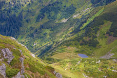 Panorama of Carpathian mountains in summer sunny day. Mountain l Stock Image