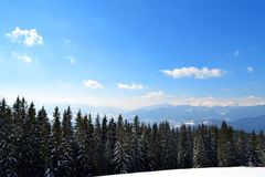 Panorama of Carpathian Mountains from top of Dovha mountain in sunny frosty day. Winter climbing and skiing stock images