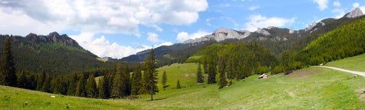 Panorama in carpathians Royalty Free Stock Image