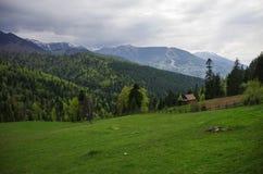 Panorama Carpathians g?ry z burzowym chmury niebem i ?niegiem na wierzcho?kach, Transylvanian, Rumunia zdjęcie stock