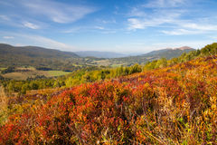 Panorama on Carpathians mountains. Royalty Free Stock Images