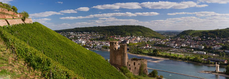 Panorama of castle Ehrenfels Royalty Free Stock Photo