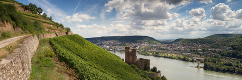 Panorama of castle Ehrenfels near Ruedesheim Royalty Free Stock Photos