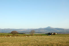 Panorama central das montanhas Fotografia de Stock Royalty Free