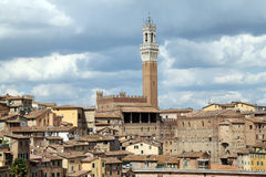 Panorama centro Siena. Panoramic view of Mangia tower in Campo square, Siena, Italy Royalty Free Stock Photos