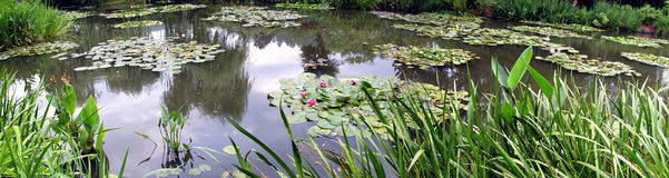Panorama of Claude Monet's gardens, Giverny, France Royalty Free Stock Image