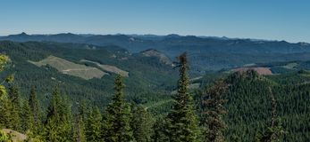 Human Impcat. Panorama of clearcuts in Western Oregon. Willamette National Forest, Oregon Stock Photography