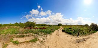 Panorama with clouds. Sun and field. Dog in right corner Stock Photography