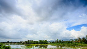 Panorama of Cloudy Sky over Rice Field in Water Forest Village. Panorama of cloudy sky over green hills tropical plants rice field in water and small village stock video footage