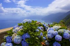 Panorama of coast in Madeira, Portugal Royalty Free Stock Photos