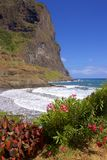 Panorama of coast in Madeira, Portugal Stock Photography