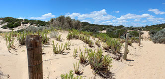 Panorama of Coastal fence landscape Stock Images