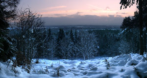 Panorama of cold and frosty snowscape. At sunrise Stock Photo