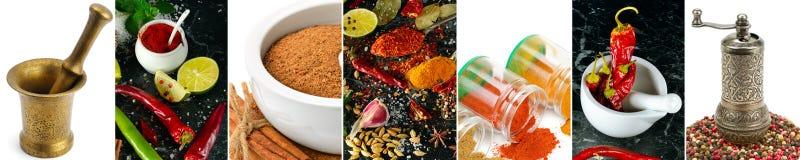Panorama- collage från en uppsättning av kryddor royaltyfri foto