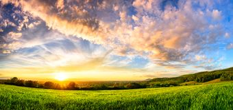 Panorama of a colourful sunset on a green meadow Royalty Free Stock Photo