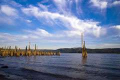 Panorama of Columbia River with remains old pier sticking out of Royalty Free Stock Image
