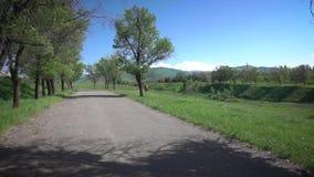 Panorama com um cavalo nas montanhas vídeos de arquivo