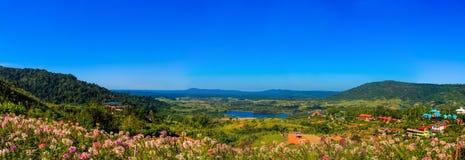 Panorama con il fiore sulla montagna e sul cielo fotografia stock libera da diritti