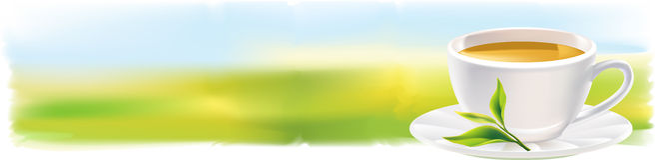 Panorama con la taza de té y de una hoja verde natural. Imagenes de archivo