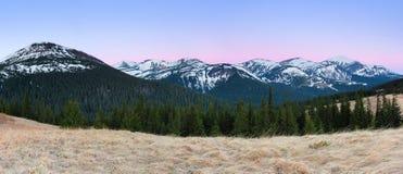 Panorama con las montañas El top de las colinas cubiertas con nieve El césped con la hierba secada Salida del sol mágica del bosq Fotos de archivo libres de regalías