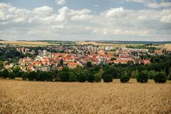 Panorama cornfield Royalty Free Stock Images