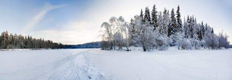 Panorama costurado do campo do inverno Imagens de Stock