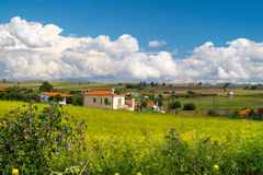 Panorama of the countryside Chalkidiki peninsula  with green fie Royalty Free Stock Images