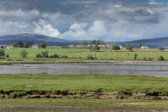 Panorama of Cromarty Firth with farms, Scotland. Cromarty Firth, Scotland - June 3, 2012: Panorama shot of Cromarty Firth at low tide shows green pastures with stock image