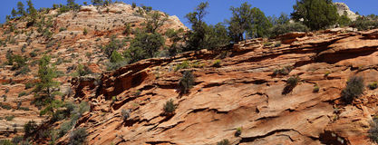 Panorama, cross current layers of red sandstone Royalty Free Stock Photo