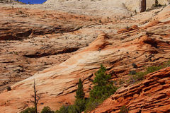 Panorama, cross current layers of red sandstone Royalty Free Stock Photos