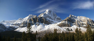 Panorama, Crowfoot Glacie Royalty Free Stock Photo