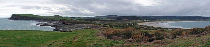 Panorama Curio zatoka w Catlins, Nowa Zelandia fotografia stock