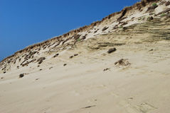 Panorama of the Curonian spit Royalty Free Stock Images