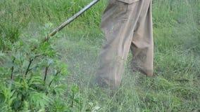 Panorama cut grass man. Panorama turn view of gardener worker man cut trim mow grass with trimmer cutter tool stock video