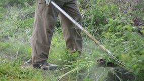 Panorama cut grass man Stock Image