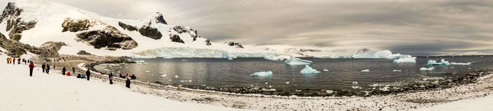 Panorama of Cuverville Island with gentoo penguins in Antarctica. Stock Photos