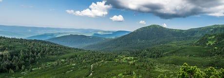 Panorama d'été des montagnes carpathiennes en Ukraine photographie stock libre de droits