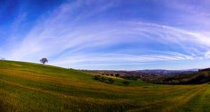 Panorama d'Albero Photos libres de droits
