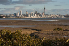 Panorama d'Auckland Images stock
