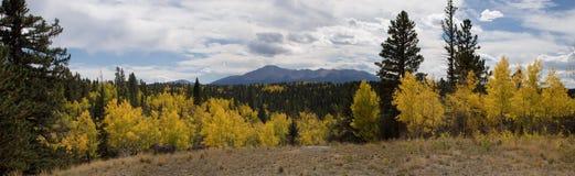Panorama d'automne Photo stock