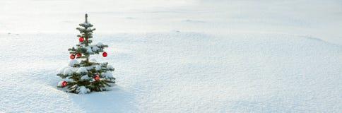Panorama d'hiver avec l'arbre de sapin de Noël et de nouvelle année Photos libres de droits