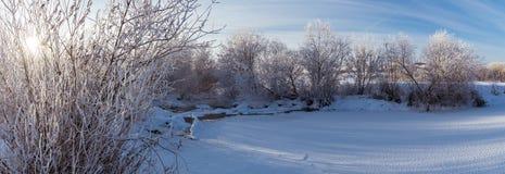 Panorama d'hiver de la rivière, Russie, Ural Photographie stock