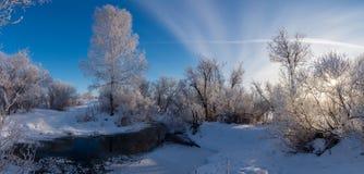 Panorama d'hiver de la rivière, Russie, Ural Photographie stock libre de droits