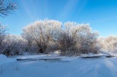 Panorama d'hiver de la rivière, Russie, Ural Images libres de droits